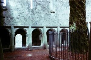 Ross Castle 02